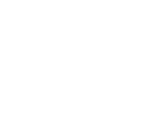 Life Chiropractic & Wellness Logo White Retina